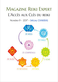 Couverture-Reiki-Expert-Site
